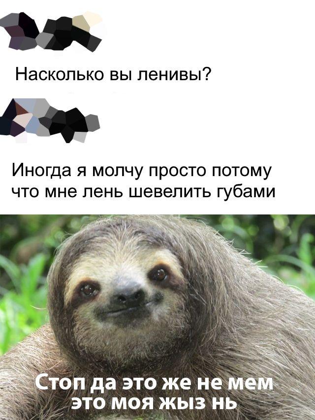 1576786823_0064.jpg
