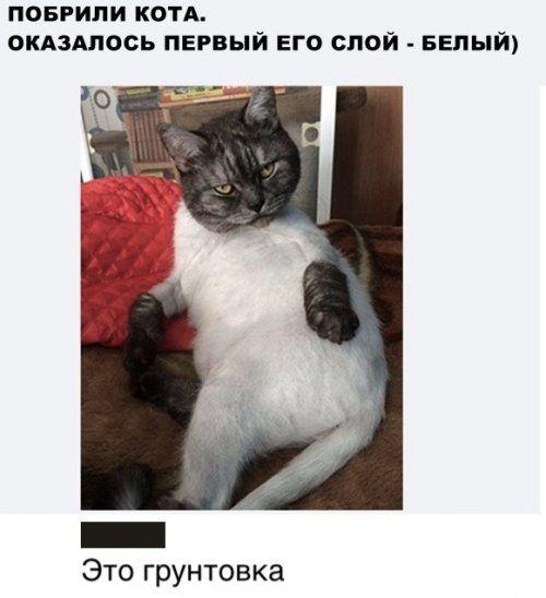 1576888230_kartinki-24.jpg