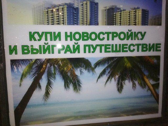 186339_19_trinixy_ru.jpg