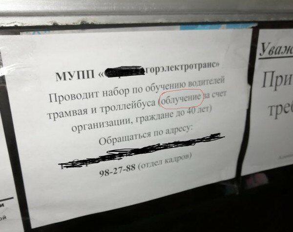 186339_9_trinixy_ru.jpg