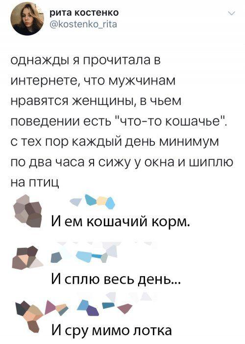 1577446804_prikol-43.jpg