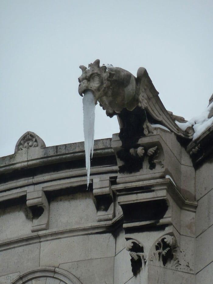 грифон сидит на крыше