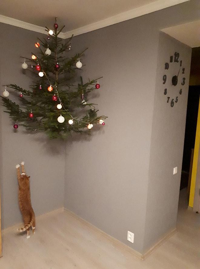 рыжий кот тянется к елке