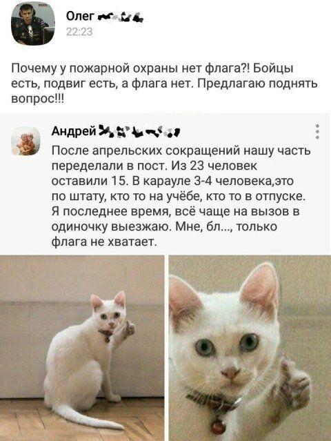 1577872463-kommentarii-iz-socialnyh-setej-29.jpg