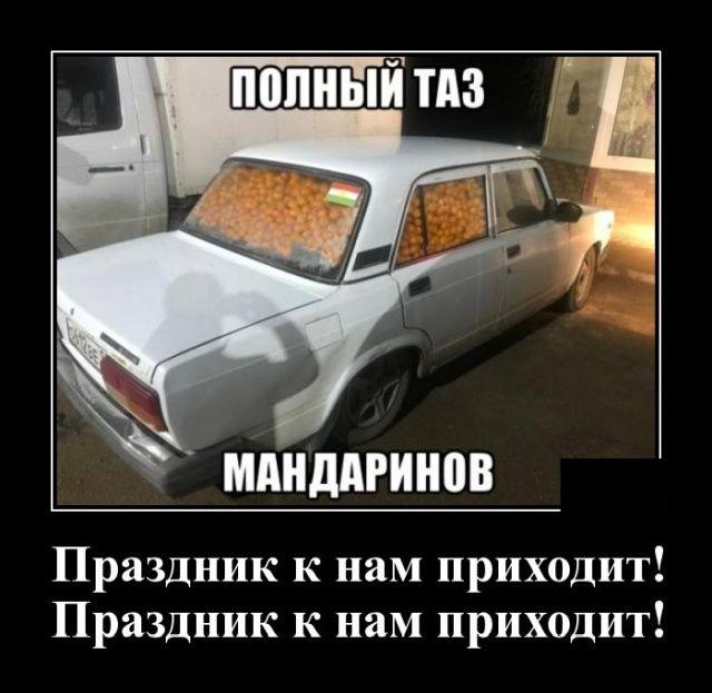 146861_40689.jpg