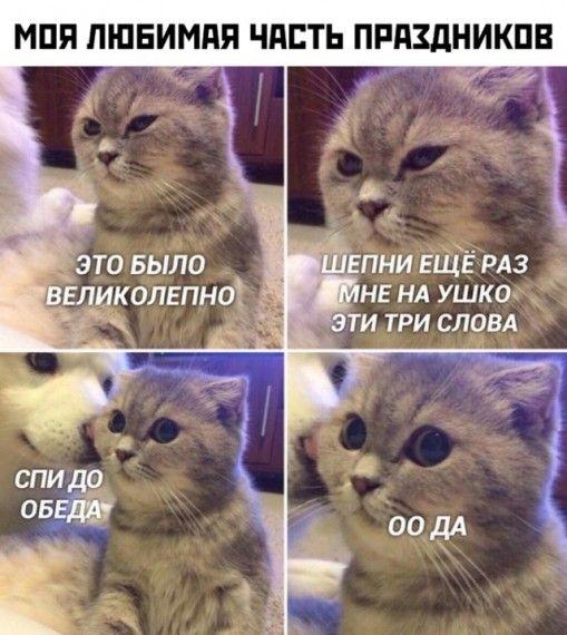 1578076381_1577952068_podb_23.jpg