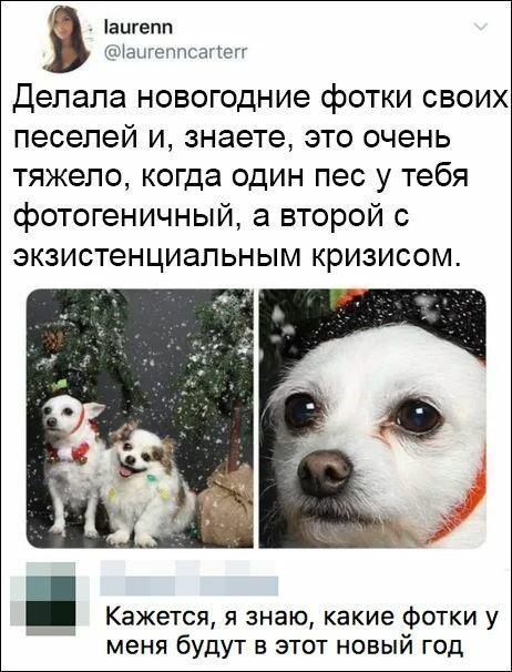 1577742591_10.jpg