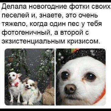 147520_39099.jpg