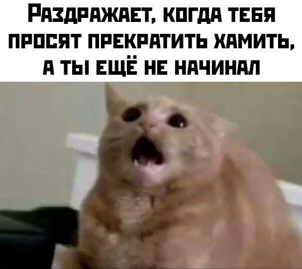 1578057679_30.jpg