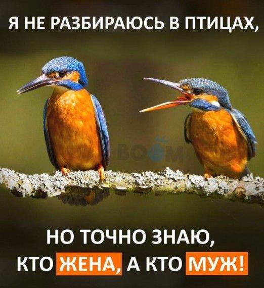 1578260035_151332307_rrr_rrrrrrryos__3_.jpg