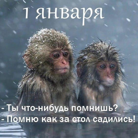 1578262080_151308323_original__1_.jpg