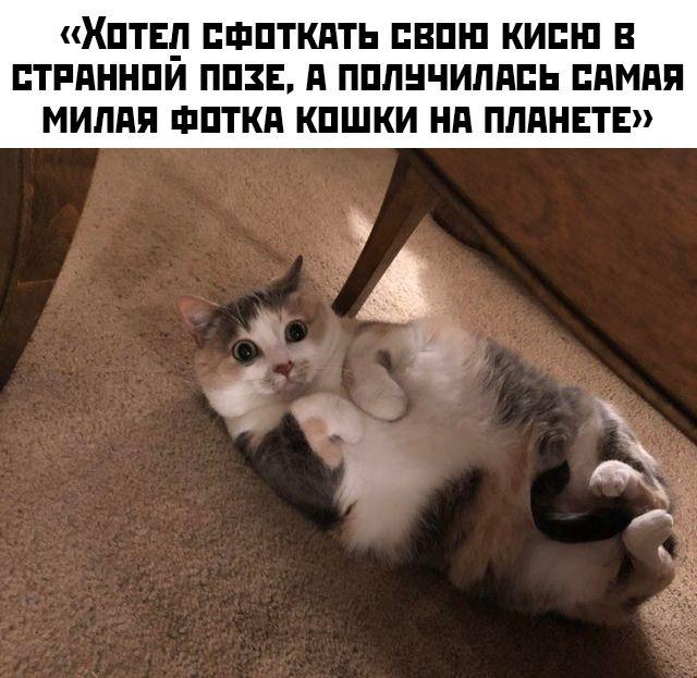 1578381500_podb_34.jpg