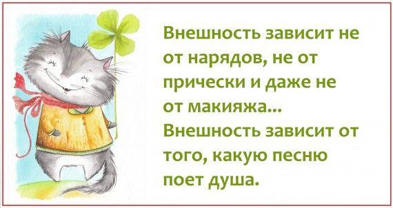 1578764449_z-psycabi_2.jpg