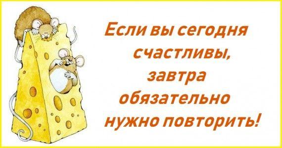 1578762977_z-psycabi_1.jpg
