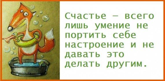 1578764477_z-psycabi_6.jpg