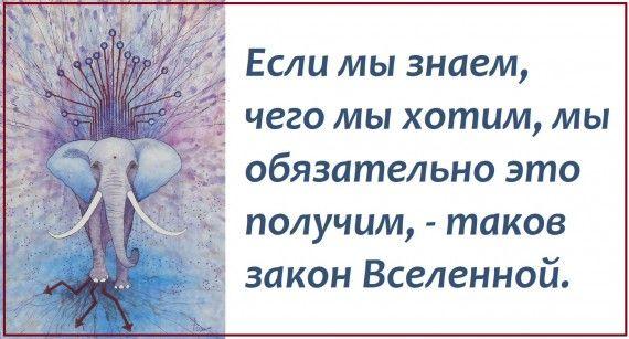 1578764695_z-psycabi_17.jpg