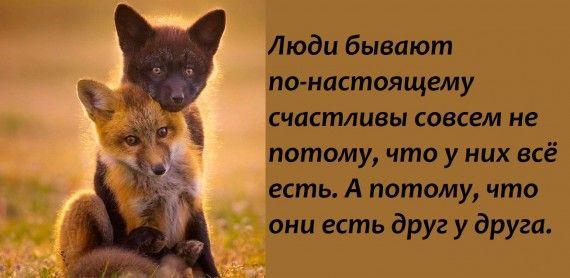 1578764494_z-psycabi_8.jpg