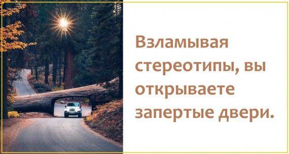 1578764444_z-psycabi_9.jpg