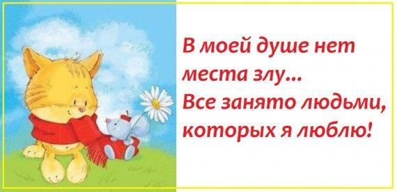 1578764483_z-psycabi_3.jpg