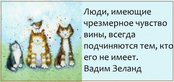1578764586_z-psycabi_11.jpg