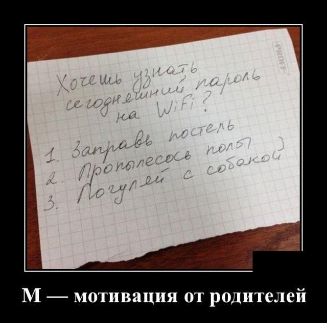 149242_98787.jpg