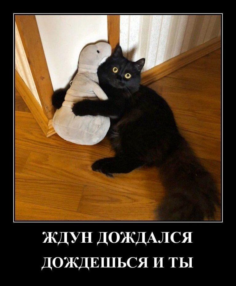 149772_75332.jpg