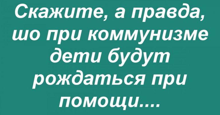 150591_13239.jpg