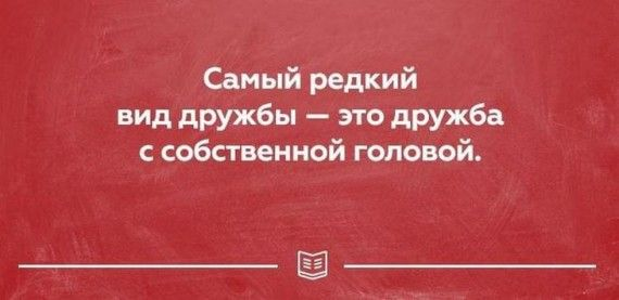 1579176681_original.jpg