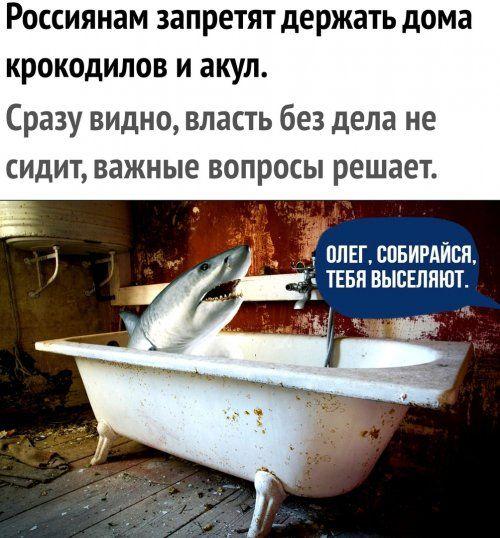 1579359375_lol-13.jpg