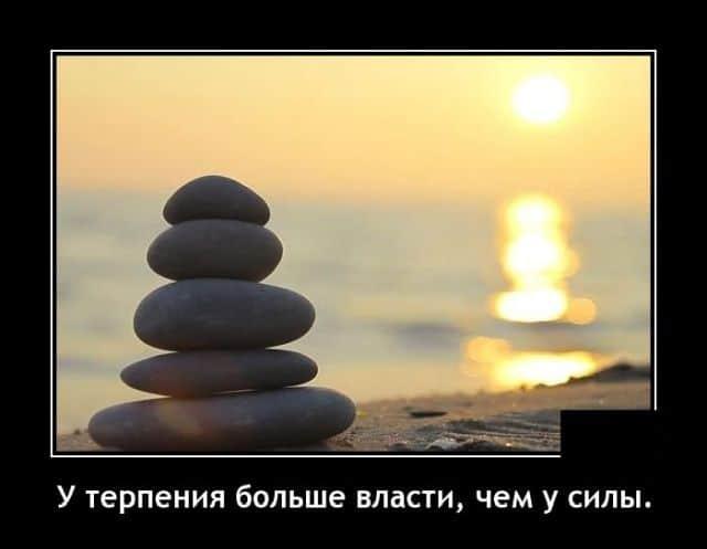 1579210319_0010.jpg
