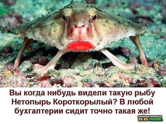 151409_25601.jpg