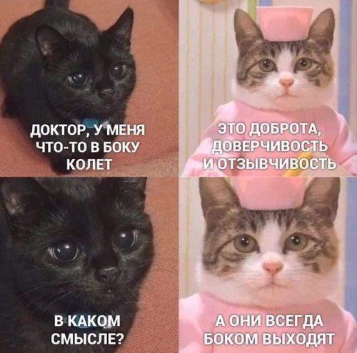 1579562503_rzhaka-6.jpg