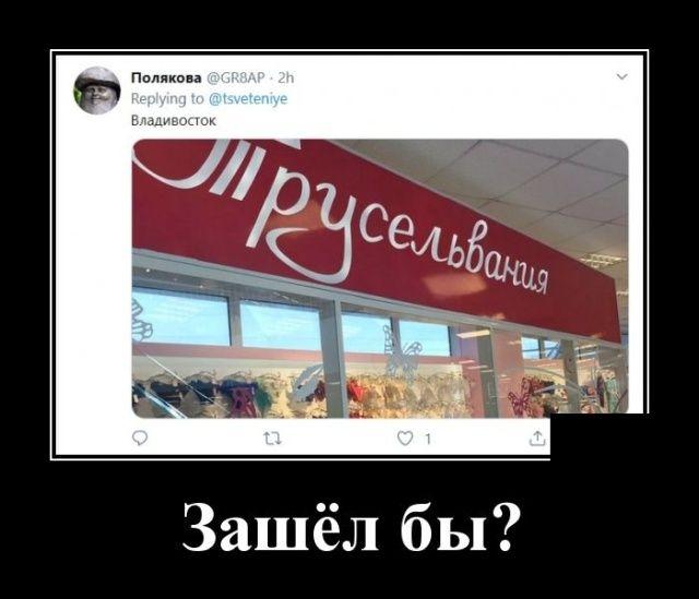 154684_29693.jpg