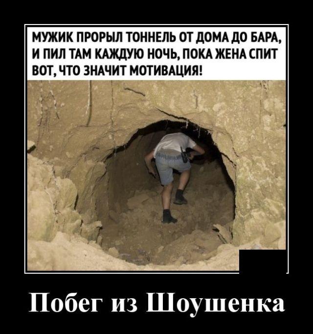 1582292573_demotivatory_02.jpg