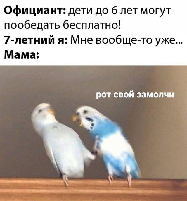 1582230918_0056.jpg