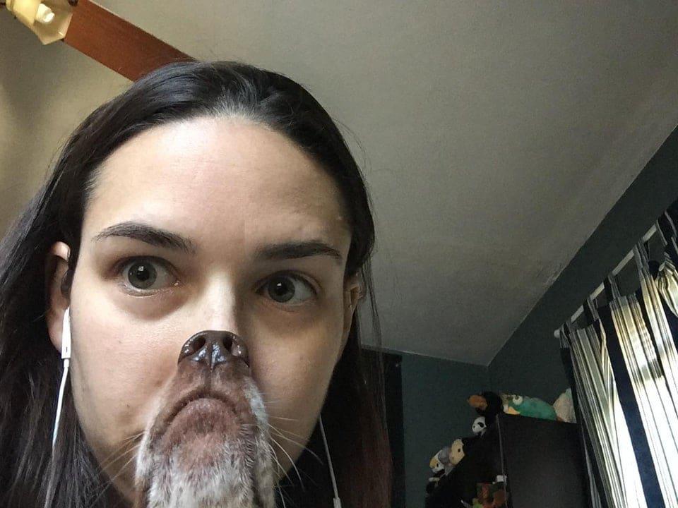 девушка и морда собаки