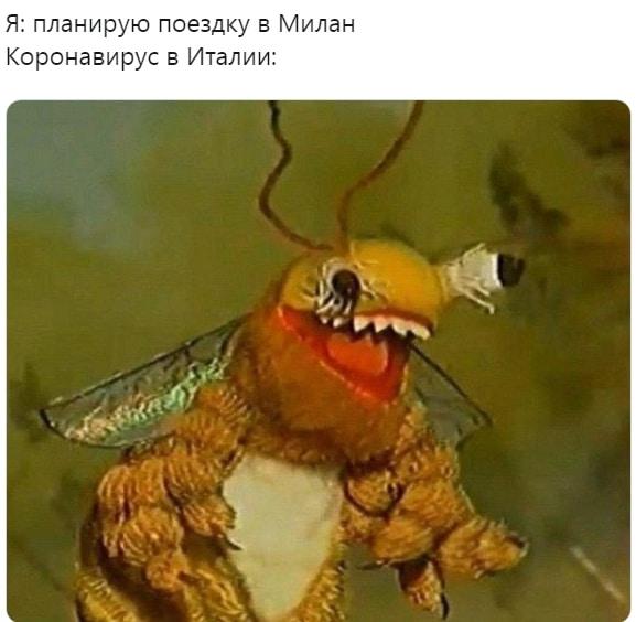 смешная пчела мем