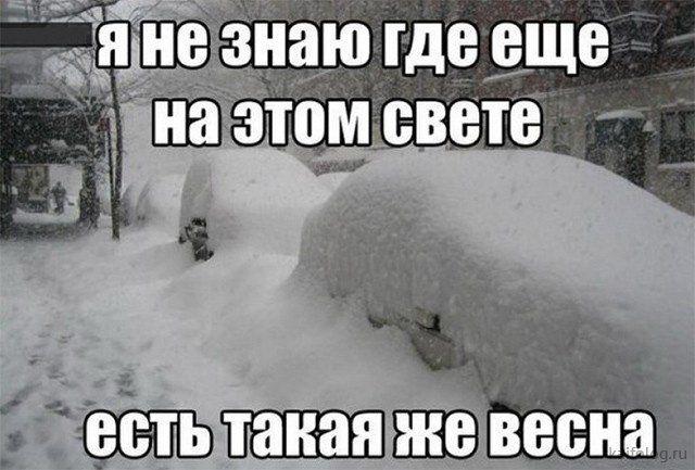 Ура, весна пришла  Приколы,kaifolog,ru,весенние приколы,весна