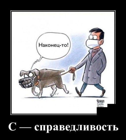1585151936_demotivator-21032020-006.jpg