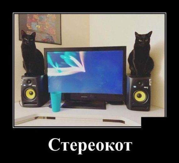 1585151919_1585148105_demotivatory_06.jpg