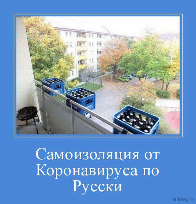 165281_33951.jpg