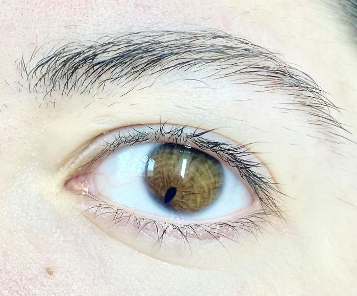 женский глаз карего цвета