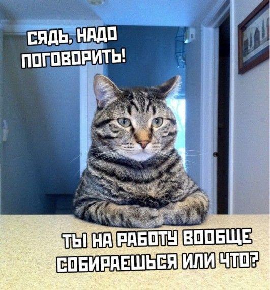 1585762032_1585730767_podb_30.jpg