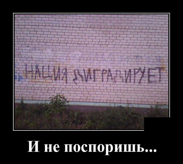 1585855668_0016.jpg