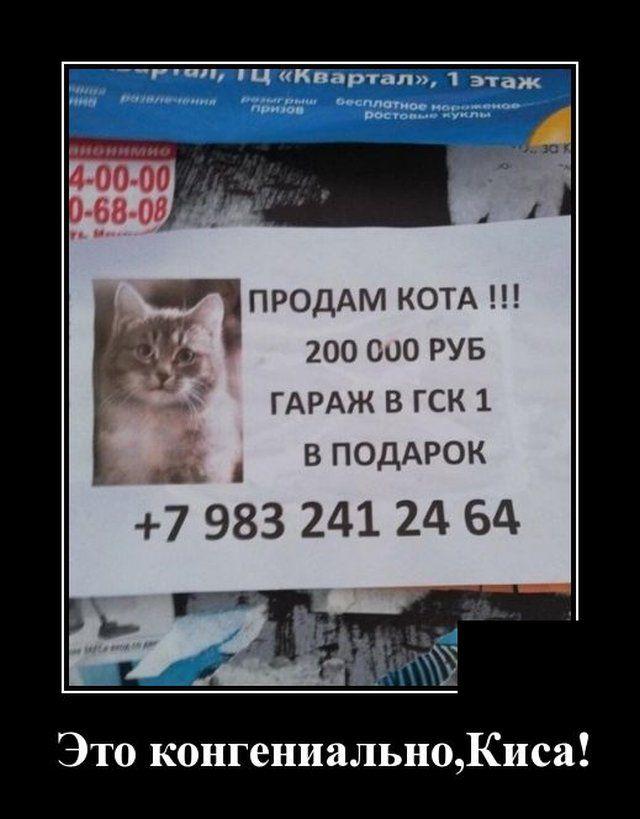 1585855679_0004.jpg