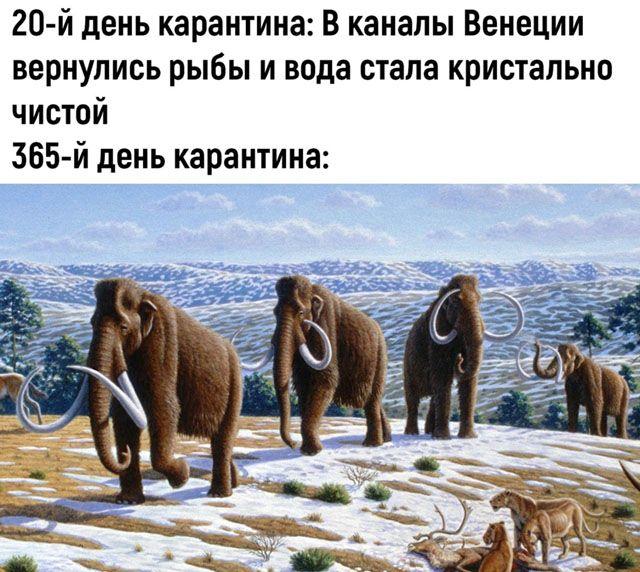 1586073273_prikol-27.jpg