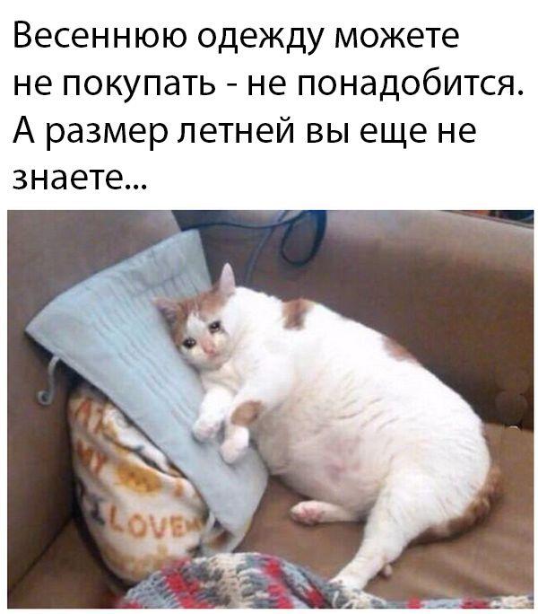 1586073346_prikol-21.jpg