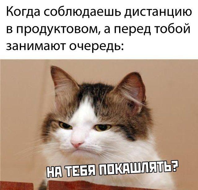 1586073354_prikol-26.jpg