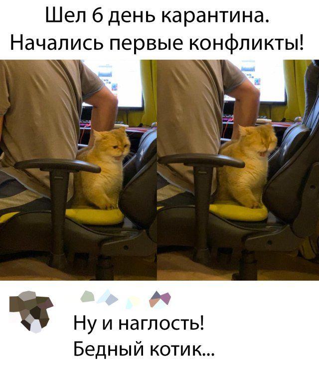 1586073339_prikol-19.jpg