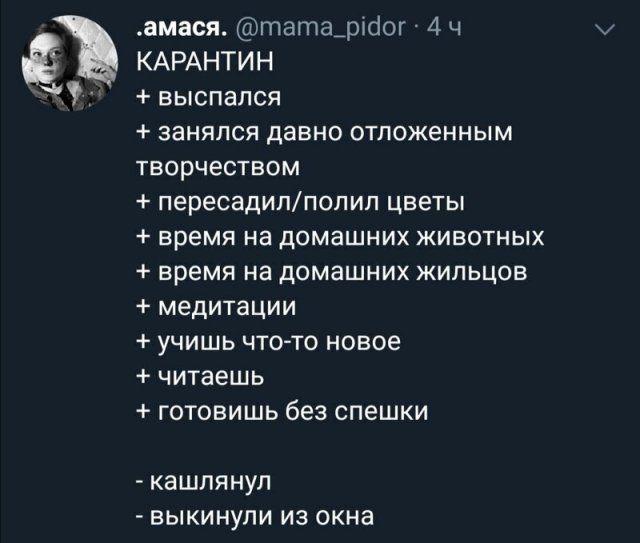 191521_5_trinixy_ru.jpg